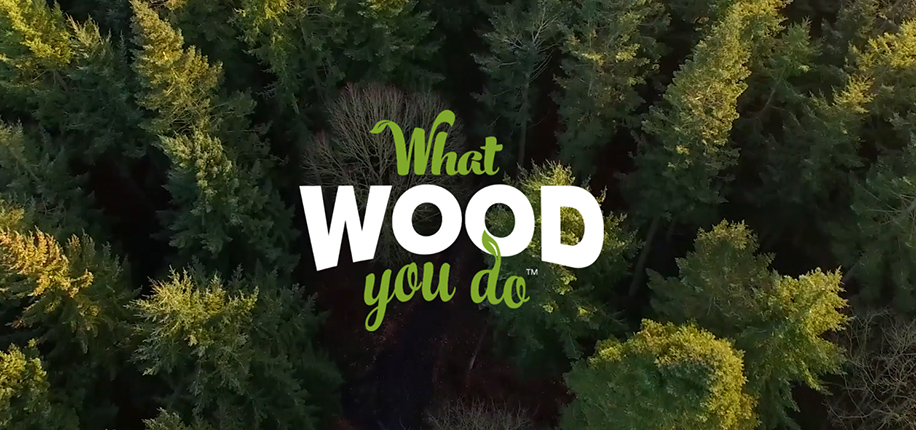 Final för innovationstävlingen What Wood You Do